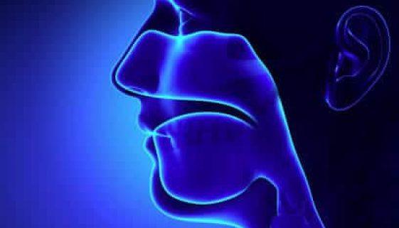 sinus-lifts-adentaloffice