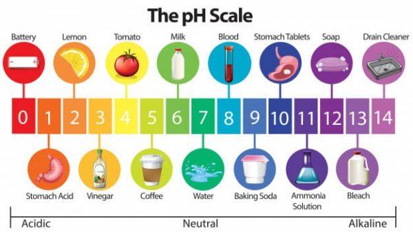 the-ph-scale-adentaloffice