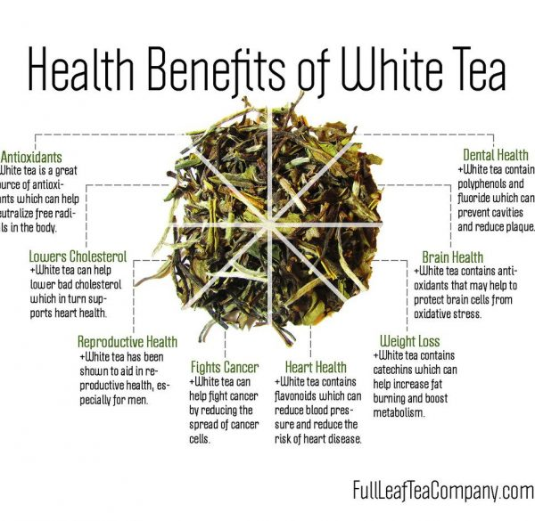 benefits of white tea infograph